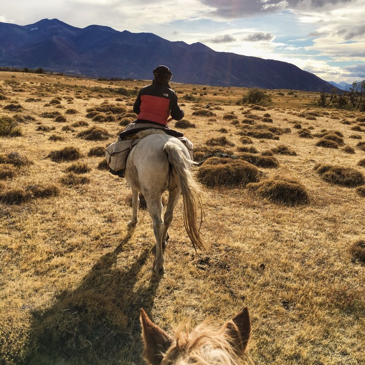 Horseback through the Pampa