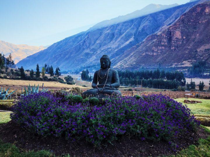 Pisac Buddha at Sacred Valley Tribe