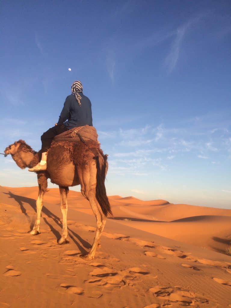 Moroccan camel trek