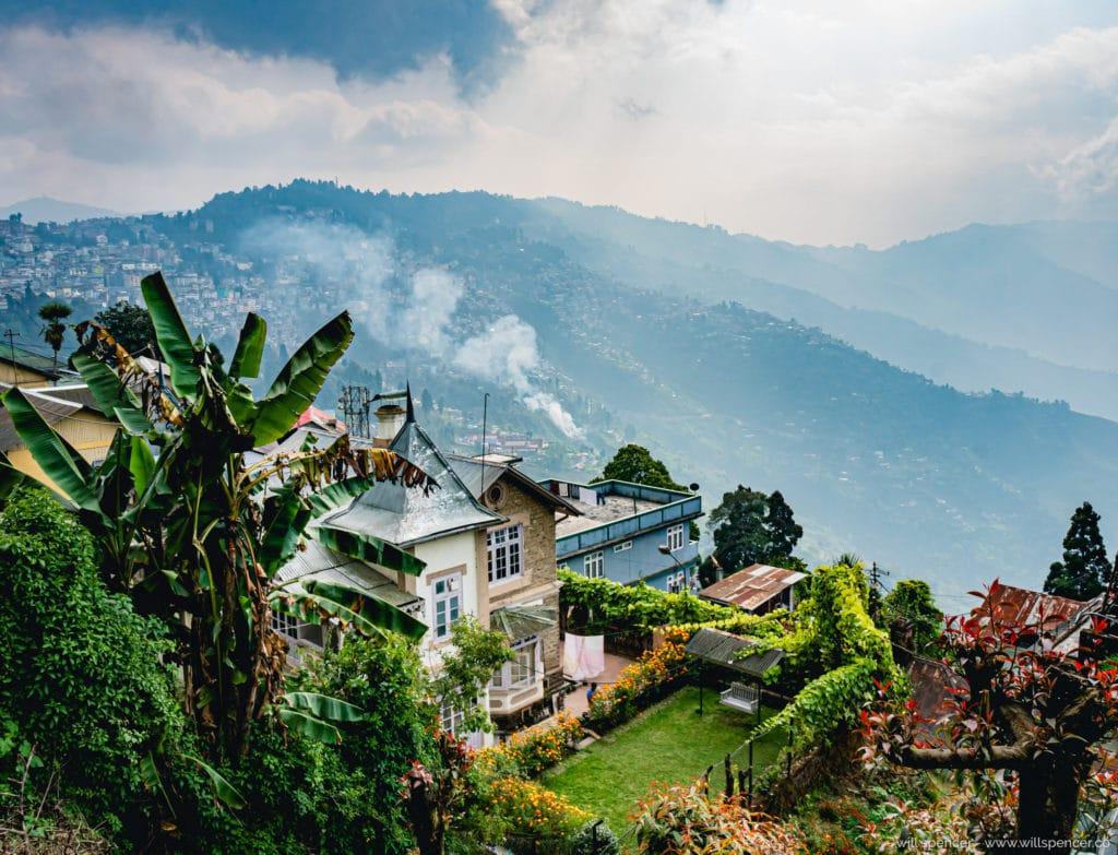 Darjeeling Tea Farm