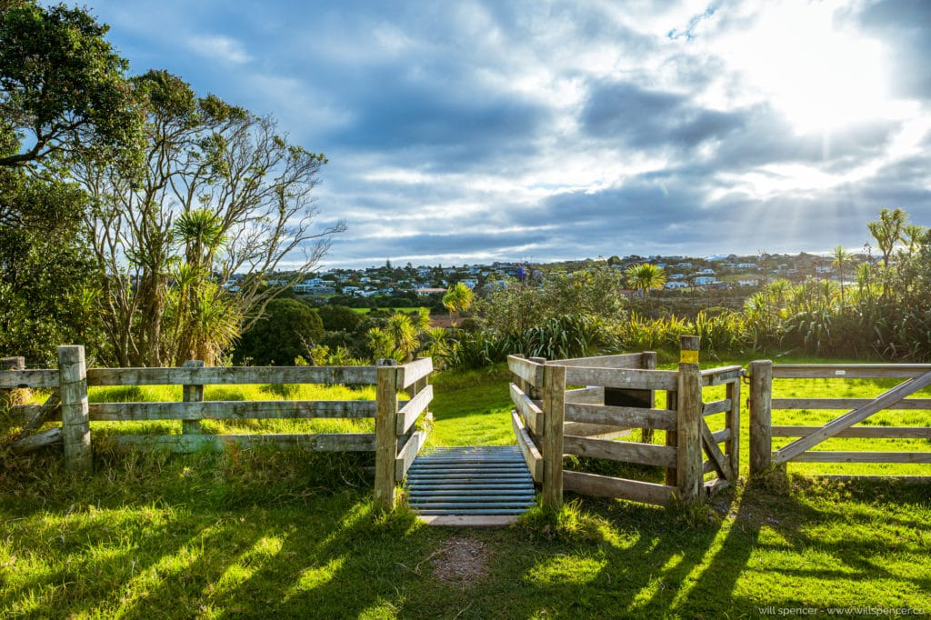 NZ fence